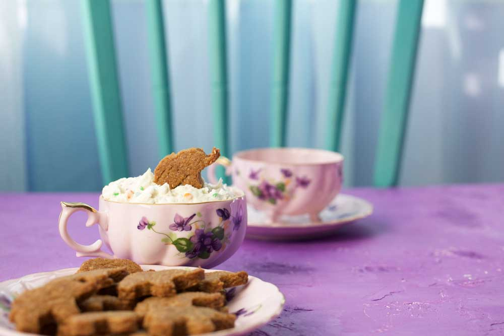 vegan elephant dunkaroos with funfetti dip