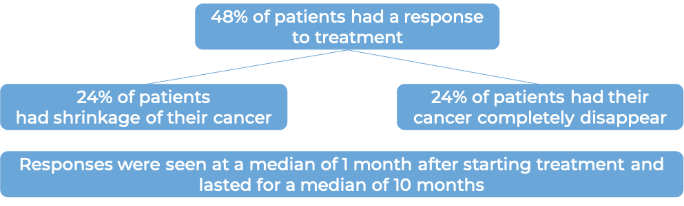 Results after treatment with Zynlonta (diagram)