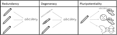 Redundancy and Degeneracy Diagram