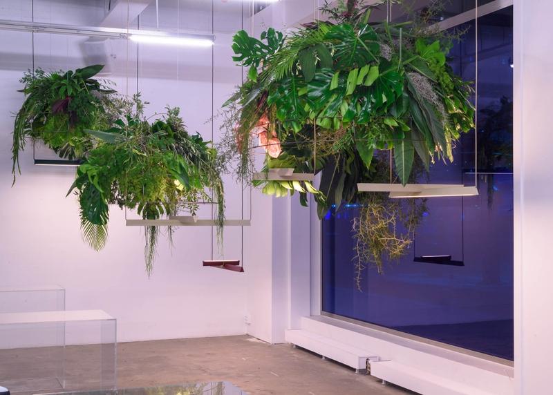 Symbiosis exhibition