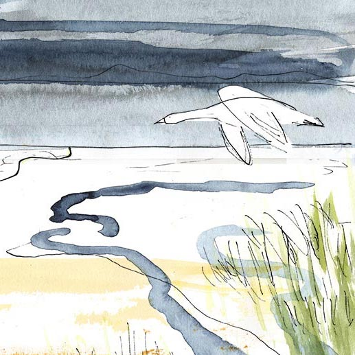 Wetlands, from 'The Snow Goose'