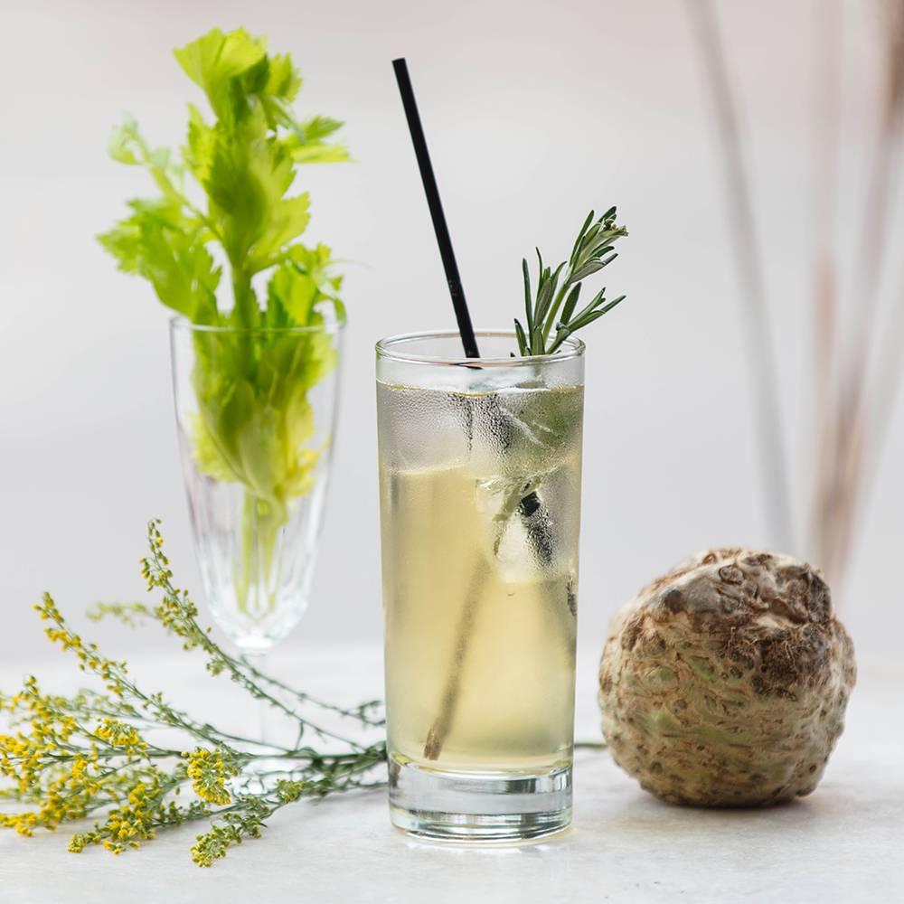 Celery Root & Tonic