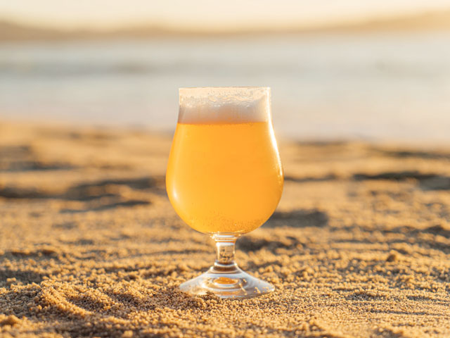 A tasty local craft beer on a Cape Cod Beach