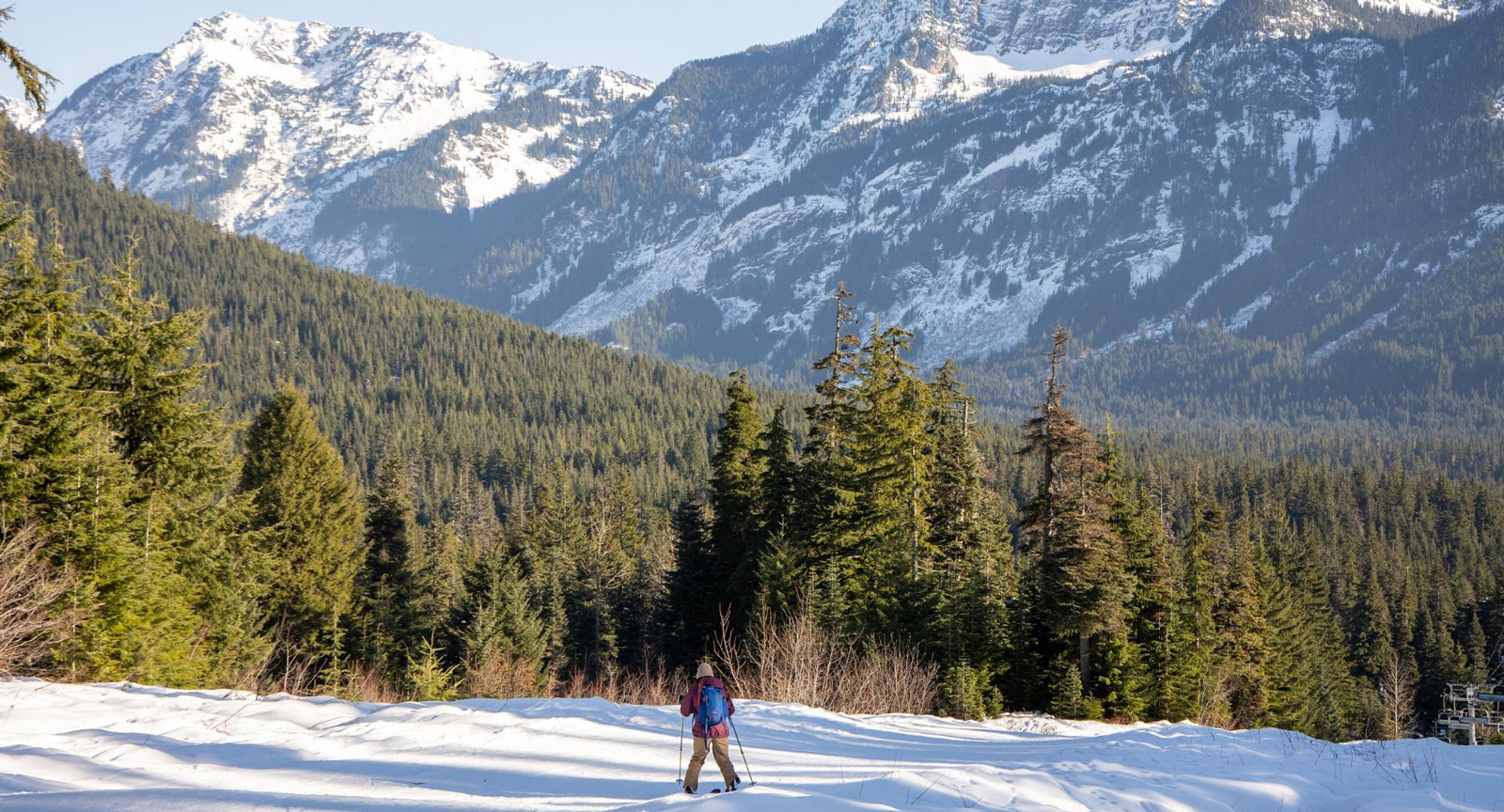 Long shot of a woman backcountry skiing across snow with a pine forest and snow-capped mountains in the distance.