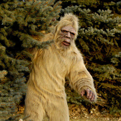 Sasquatch Sighting App