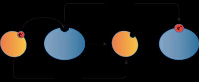 Oksidacija ir redukcija