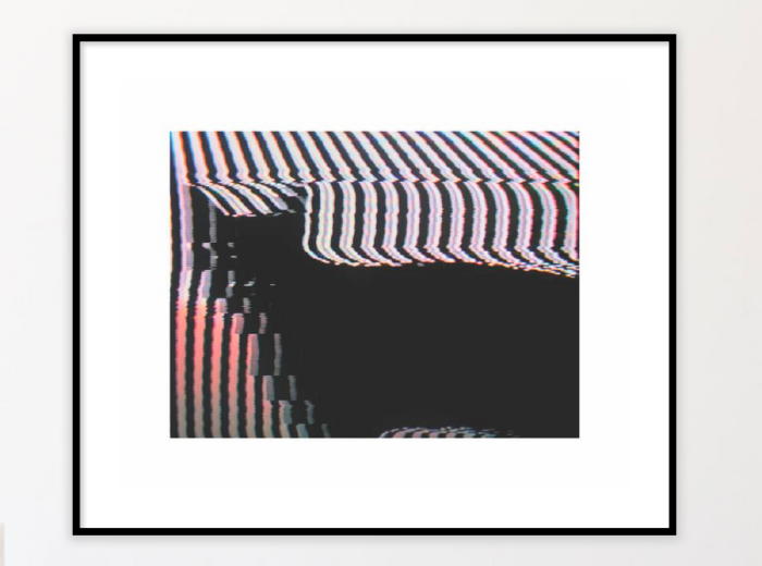 portfolio-cattoday-print.png