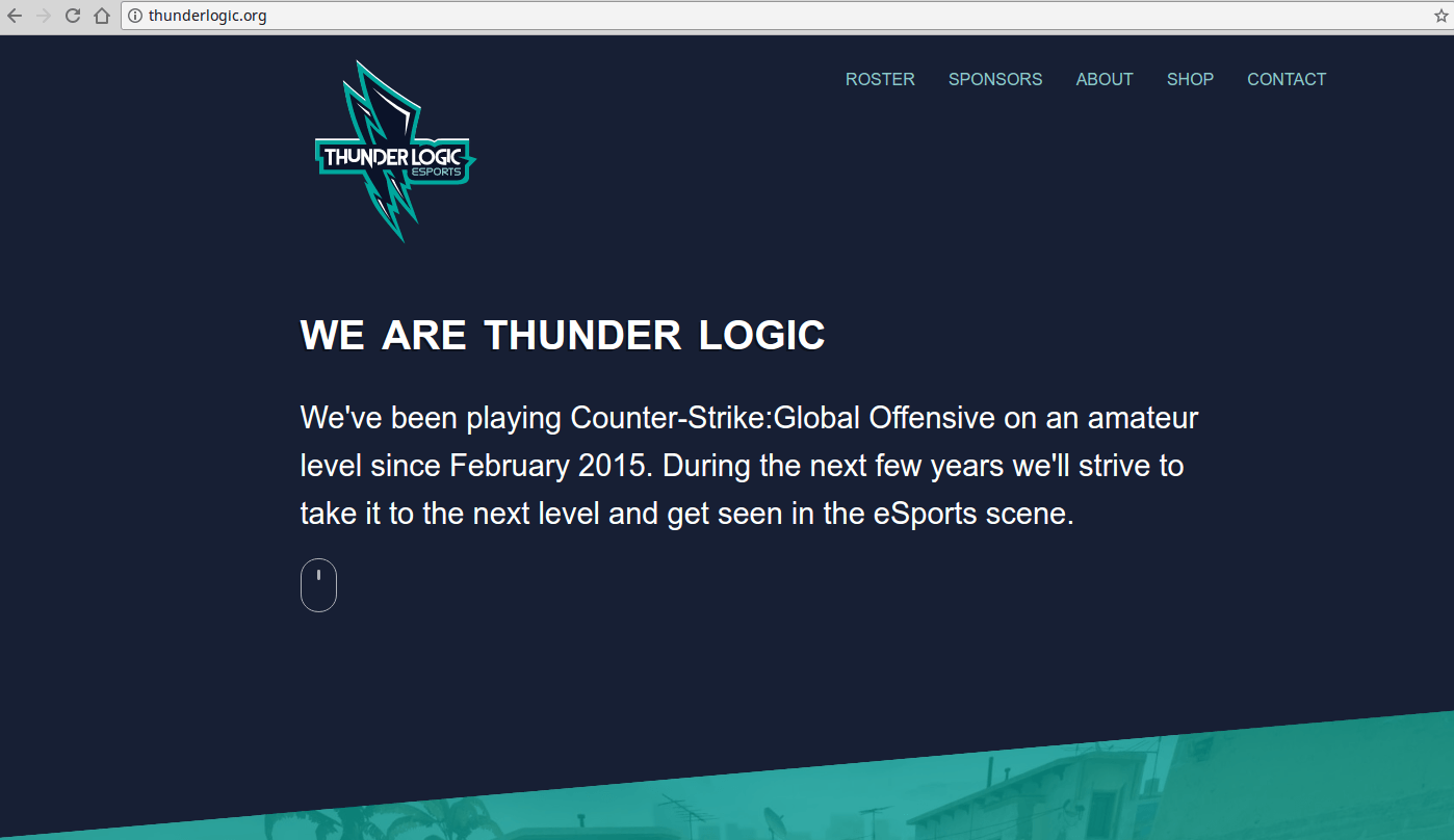 ThunderLogic Custom Website Design