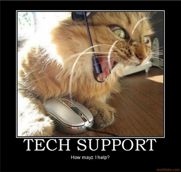 Picture of an angry cat acting as tech support