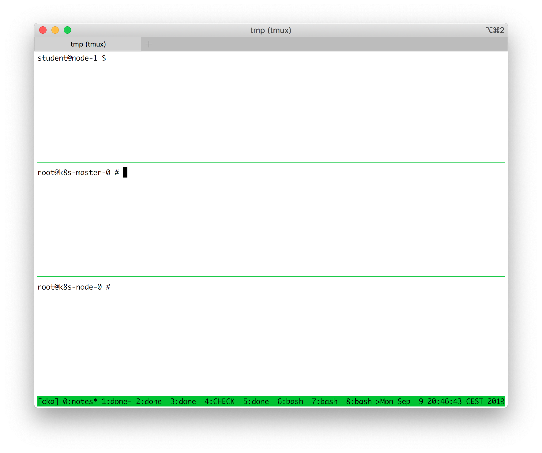 Multiple side by side terminals in a single tmux window.
