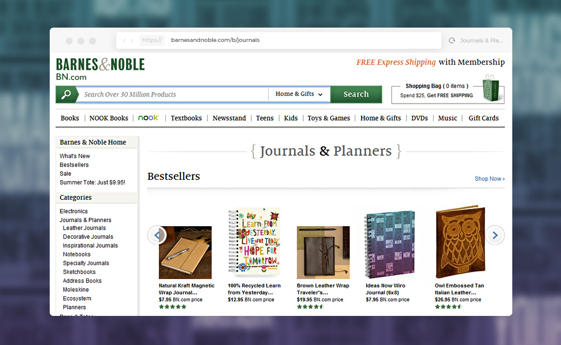 Screenshot of the journal on bn.com