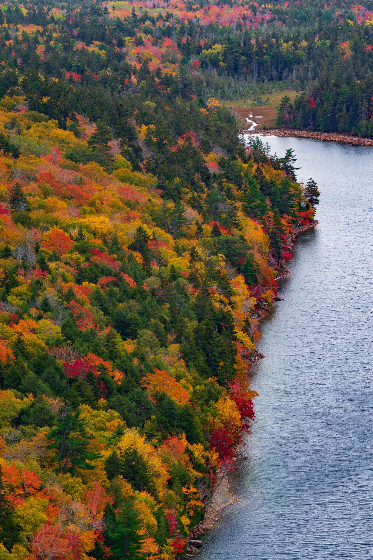 Fall Foliage at Jordan Pond