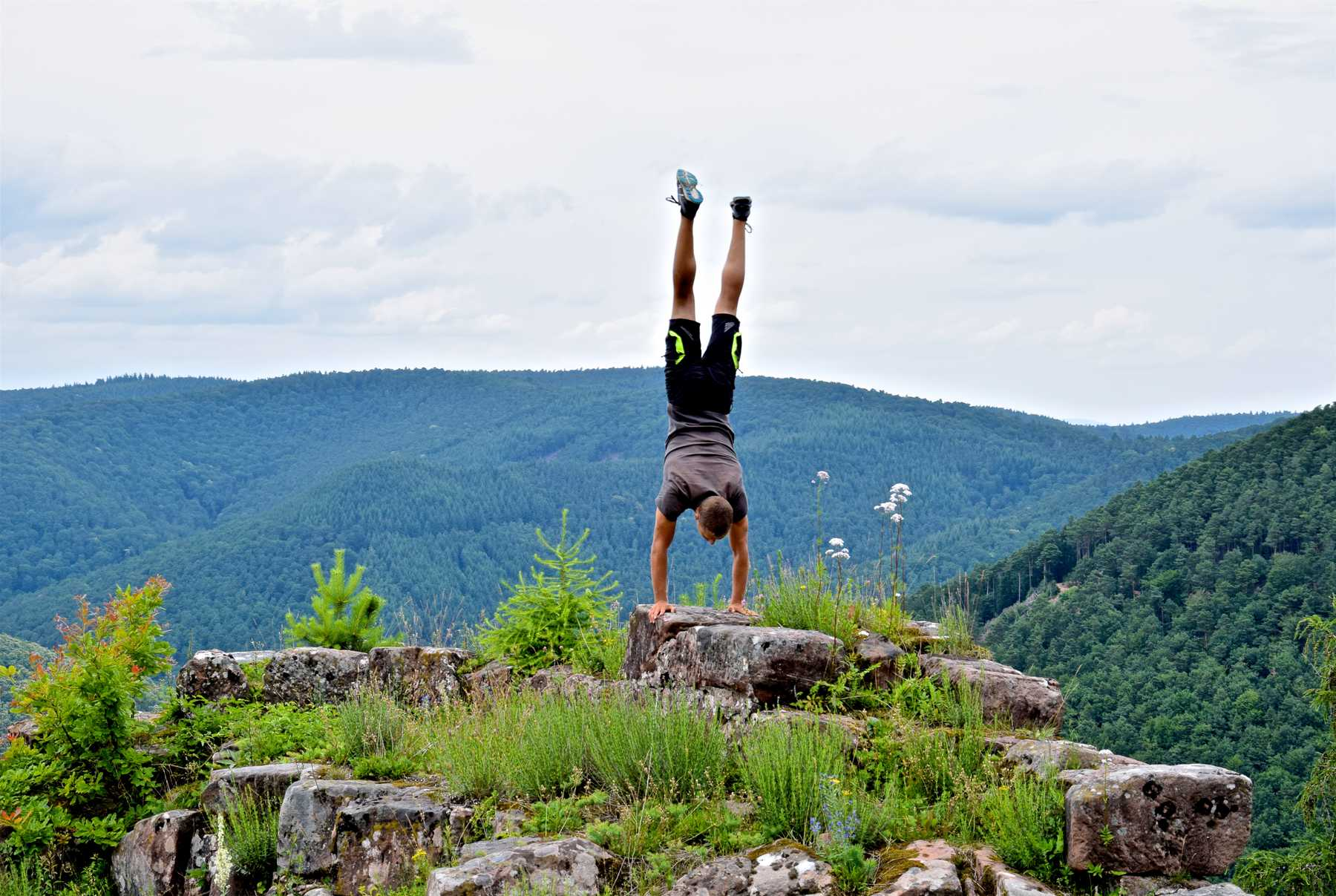 Palatinate Forest Handstand
