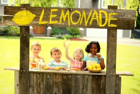 Lemonade Stand Software