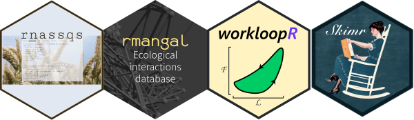 hex logos from rnassqs, rmangal, workloopR, skimr packages