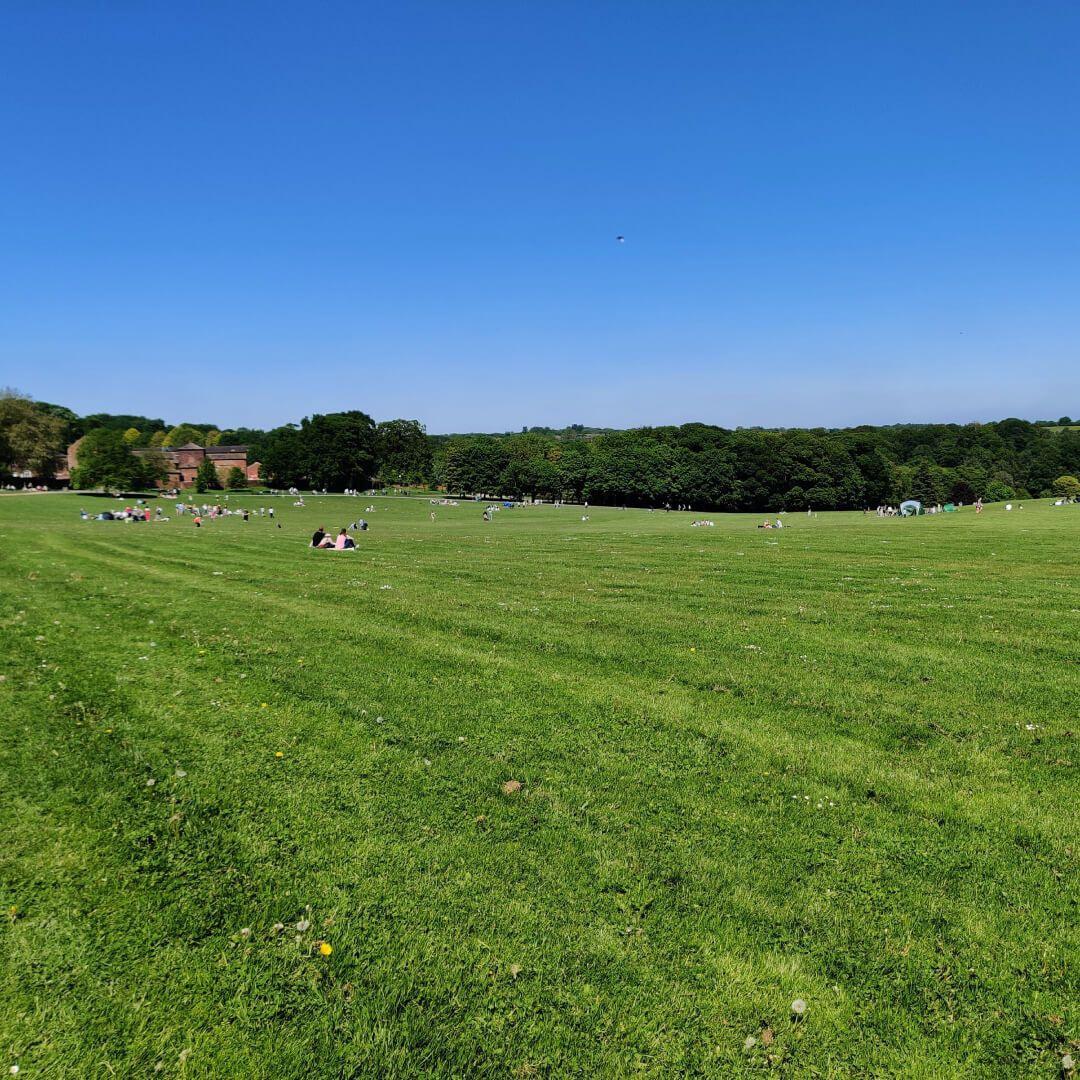 Temple Newsam fields and picnics