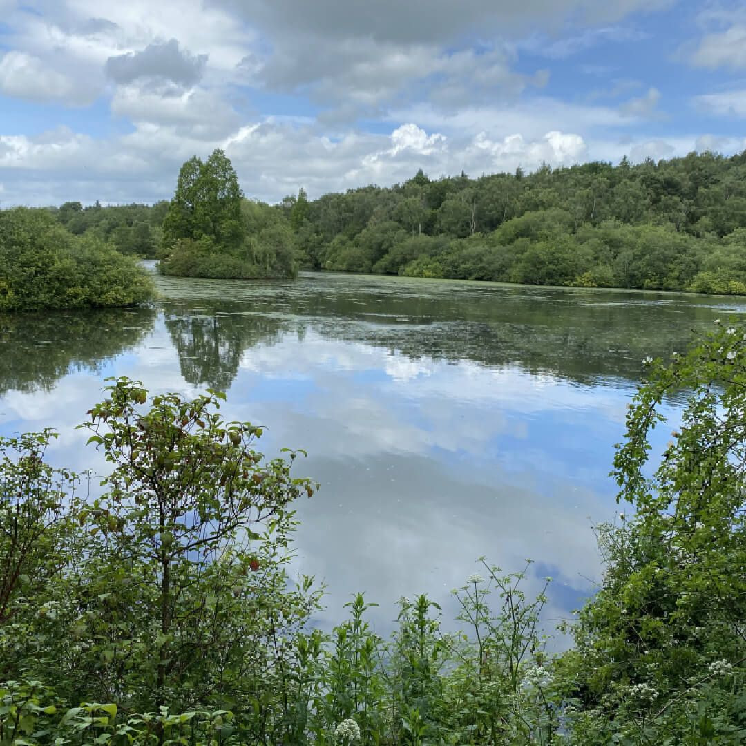 Adel Nature Reserve Lake