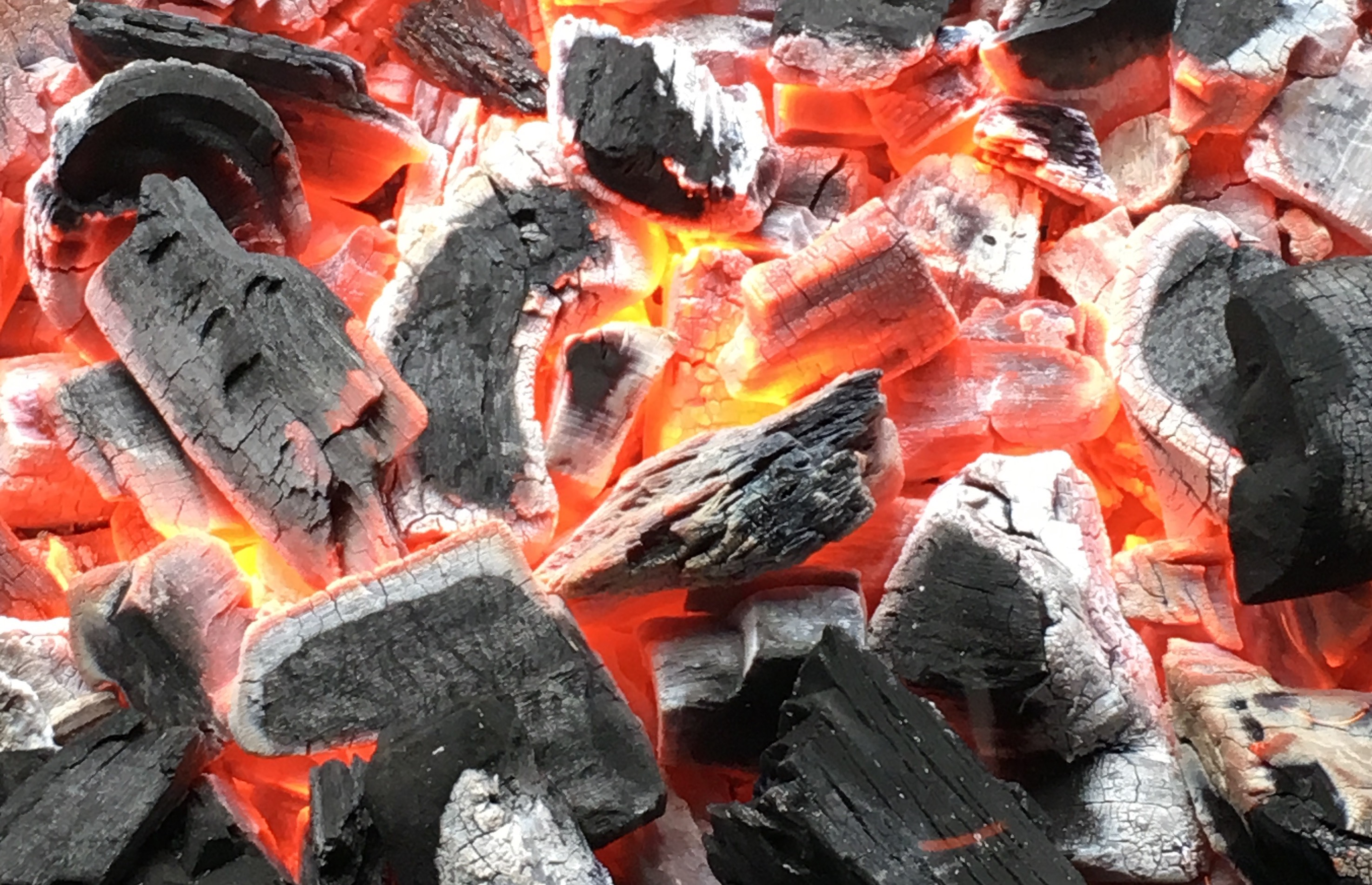 Glowing hot lump wood charcoal in Auckland