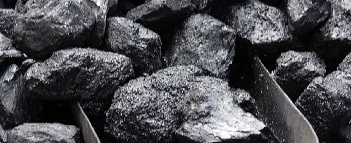 Despre Cărbunii de pământ pe înțelesul copiilor
