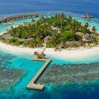 Island 300x164