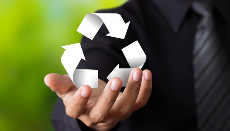 Imagem em destaque para o artigo: Aprenda a criar uma marca realmente sustentável