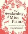 The awakening of Miss Prim by Natalia Sanmartin Fenollera