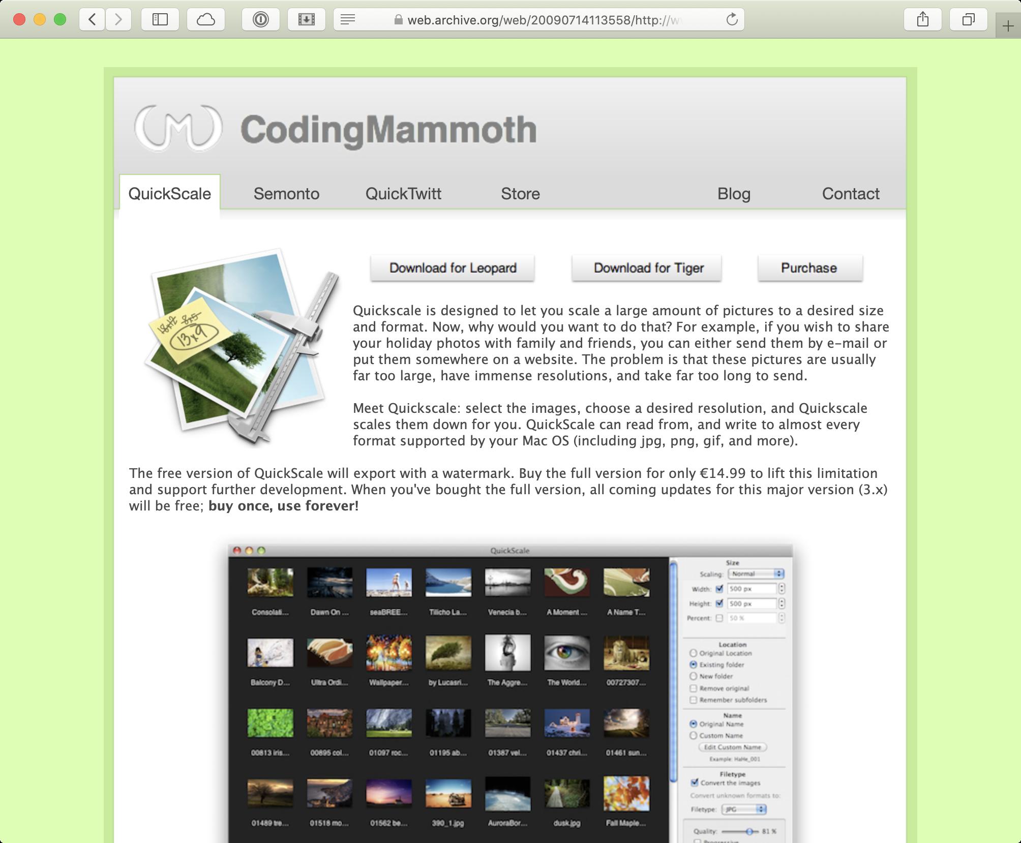 Website Coding Mammoth QuickScale 2009