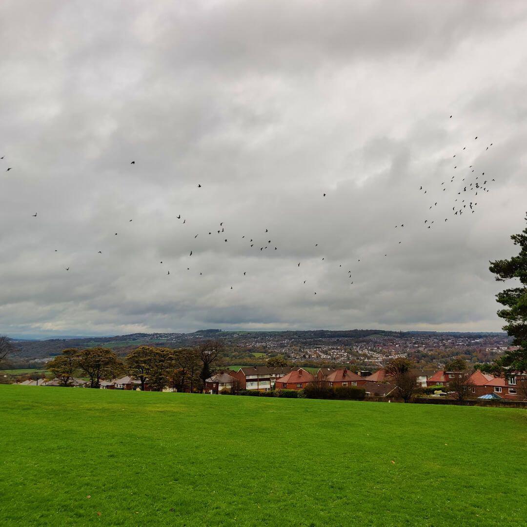 Bramley Park view over Bramley