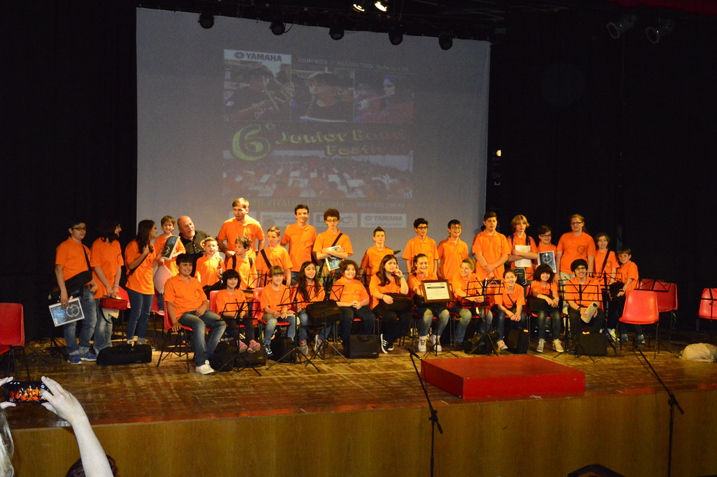 A group photo of our orchestra on stage at a Festival