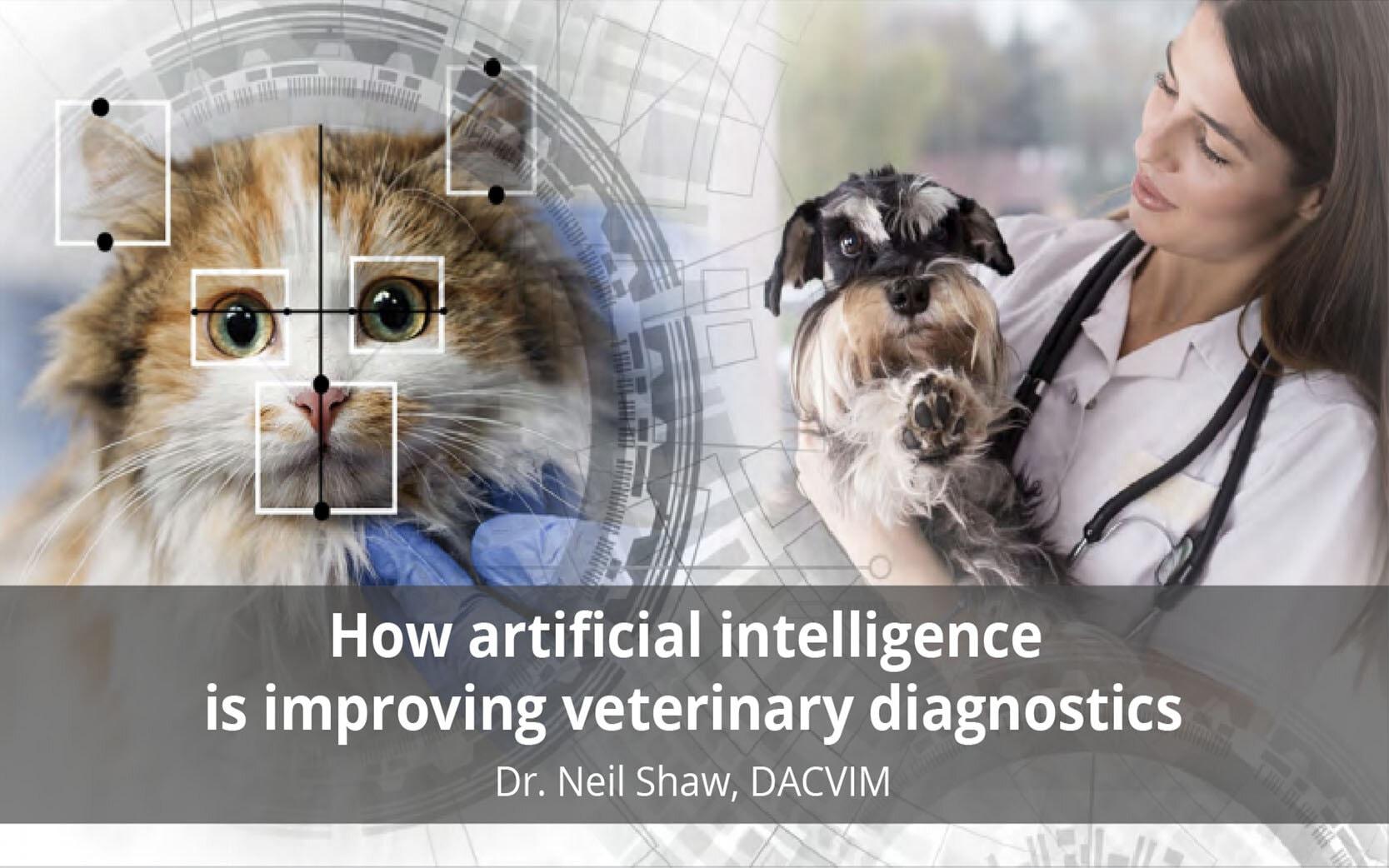 improving-veterinary-diagnostics