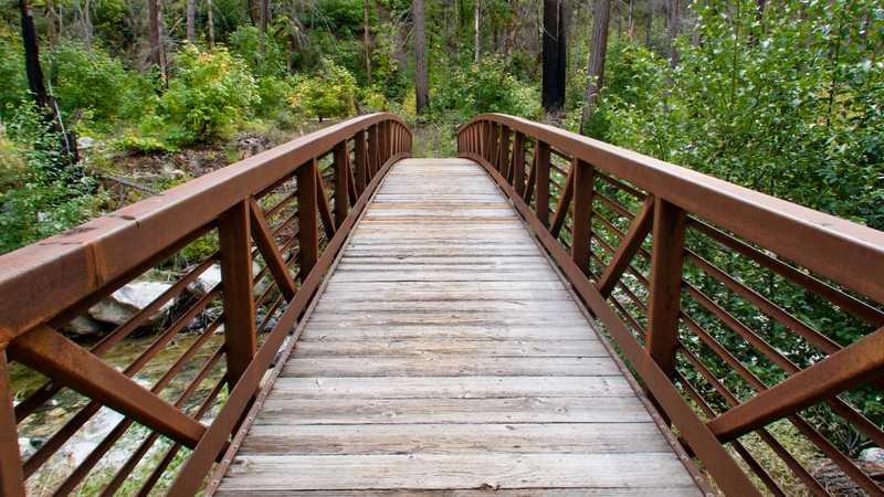 A footbridge over Grider Creek