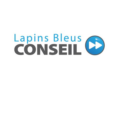 image from Lapis Bleus Conseil