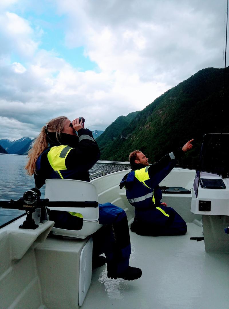 Om Balestrand fjord angling