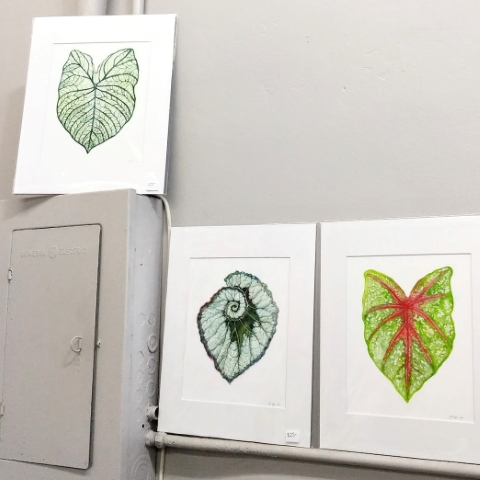 Shop Watercolor Prints