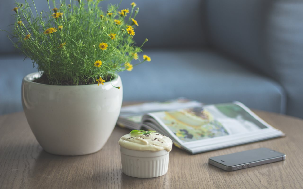 A flower pot with small rare yellow flowers as an example of a natural attractor is located on a table next to a delicious muffin.