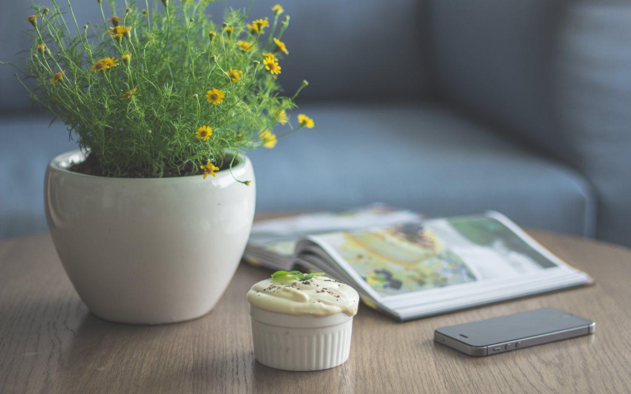 Цветочный горшок смелкими редкими жёлтыми цветками как пример природного аттрактора располагается настоле рядом совкусным кексиком.