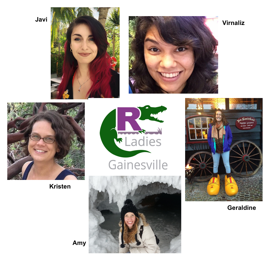 RLadies Gainesville team and logo