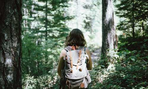 A person hiking in the woods