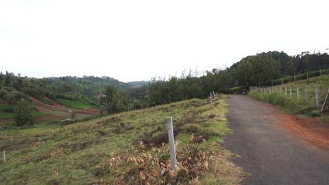 Plot 7 Creekside - Road approaching two plots