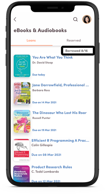 A screenshot from the app, showing the details in the 'eBook Loans' page.