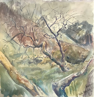 watercolour painting of small apple tree