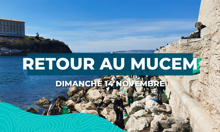 Image principal Retour au Mucem (#51)