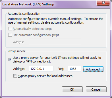 IE-LAN-settings