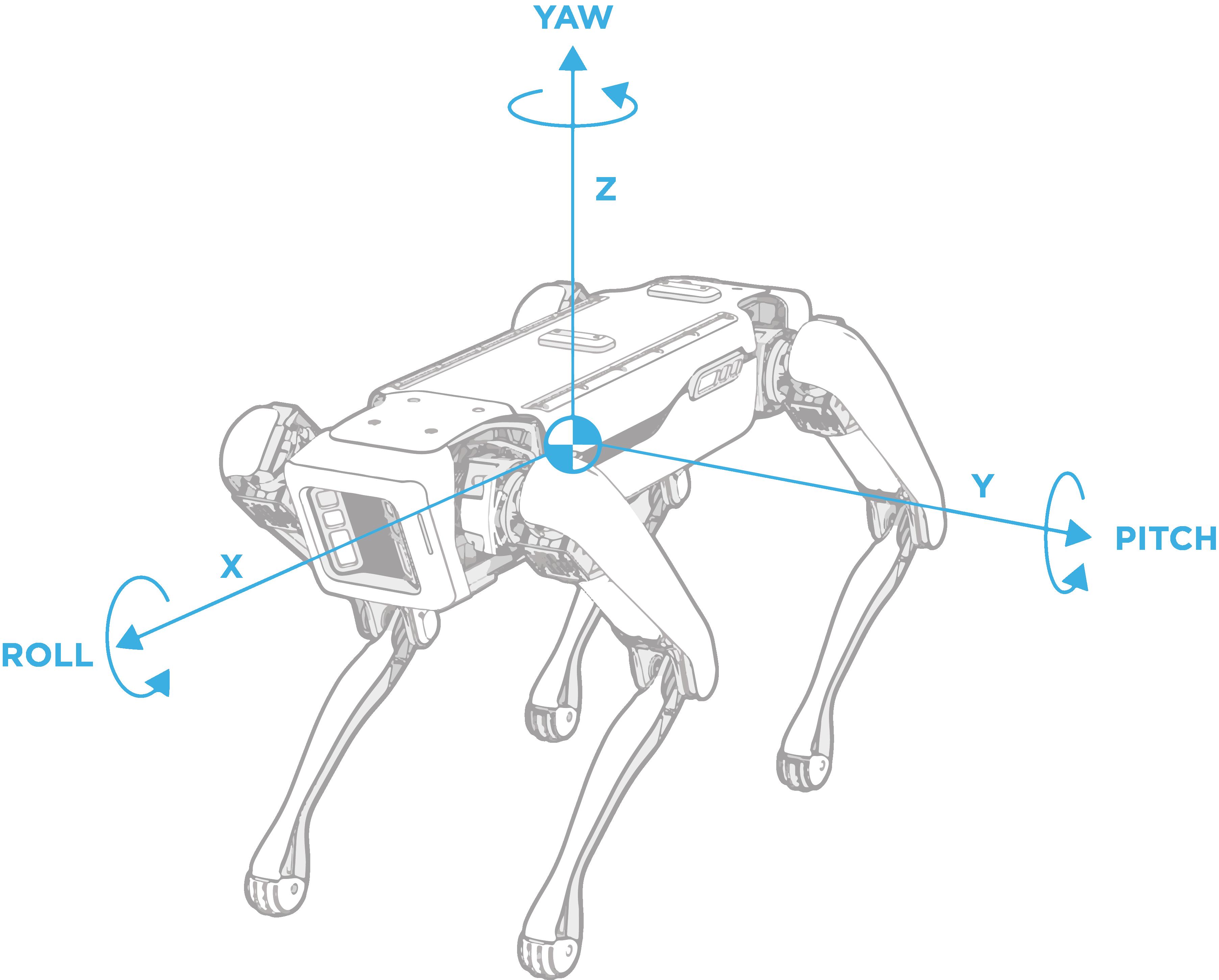Spot geometry