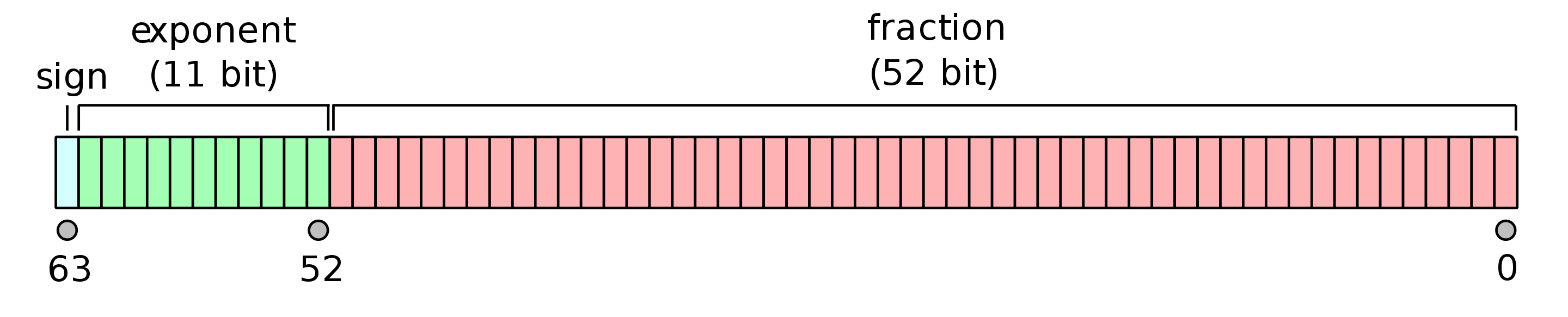 The double-precision floating-point format