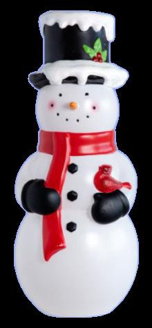 Snowman With Cardinal photo