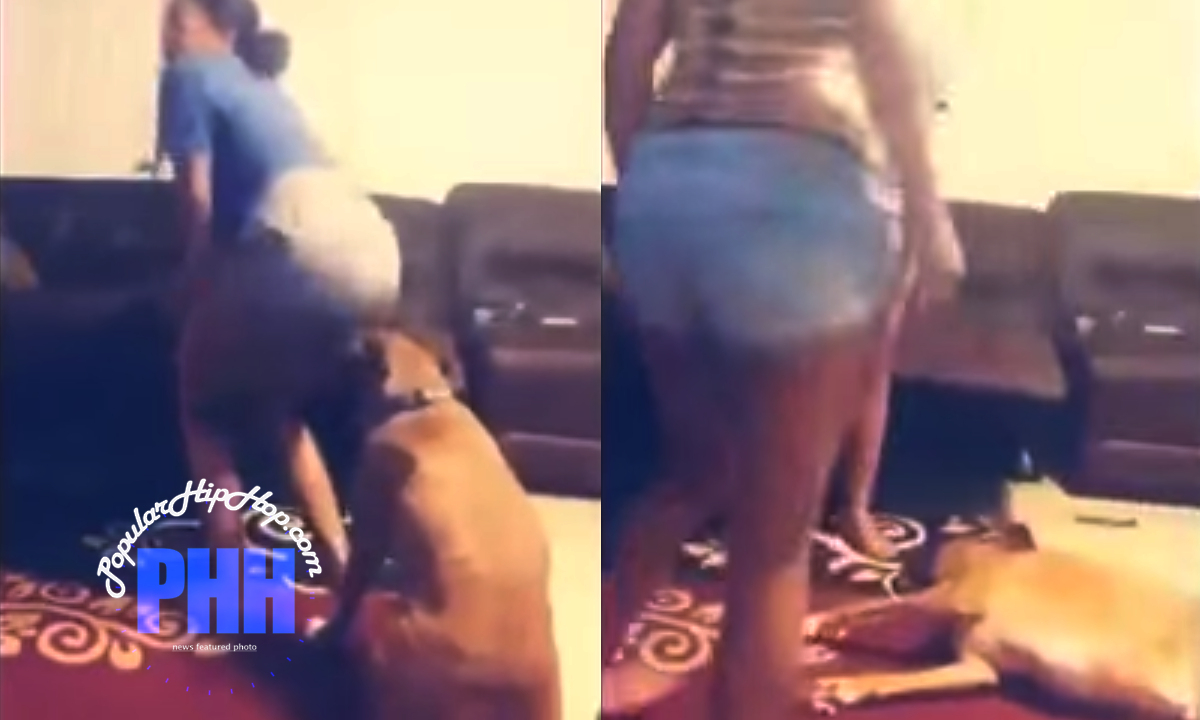 Dallas, Texas Girl's Twerking Was Too Bootylicious For Her 2-Year Old Box-Pitbull Dog. Fumes of Doom.