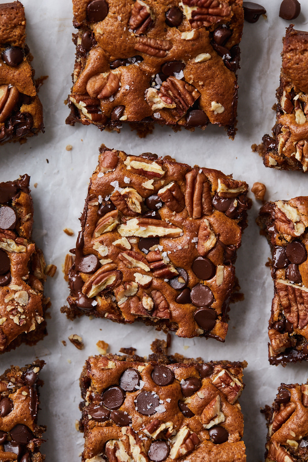 Chocolate Chip and Pecan Almond Butter Blondies