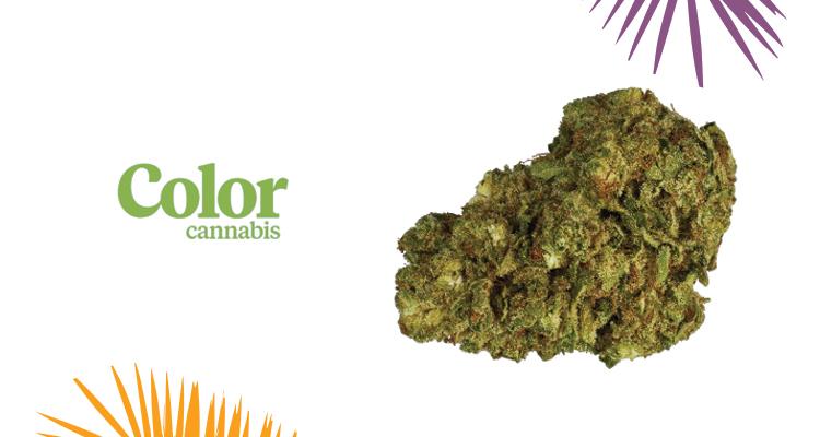 Color Cannabis – Ghost Train Haze Strain