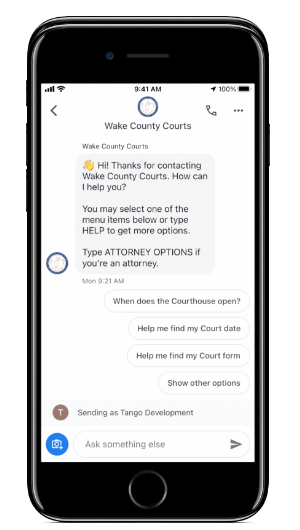 Chatbots for Government